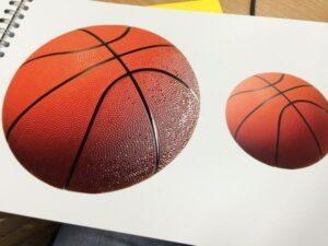 scodex basketball
